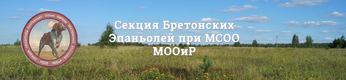 Бретонский Эпаньоль МООиР